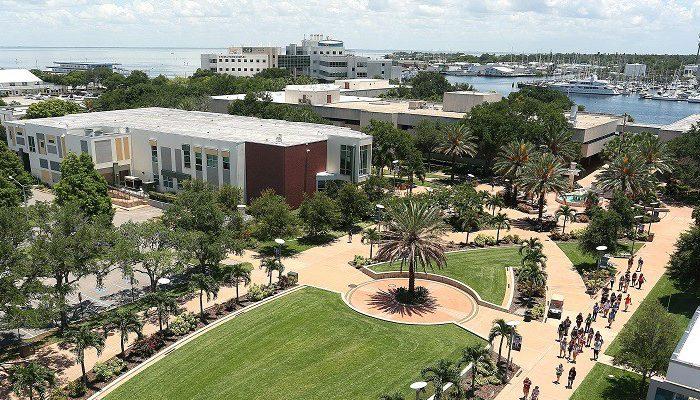 đại học south florida